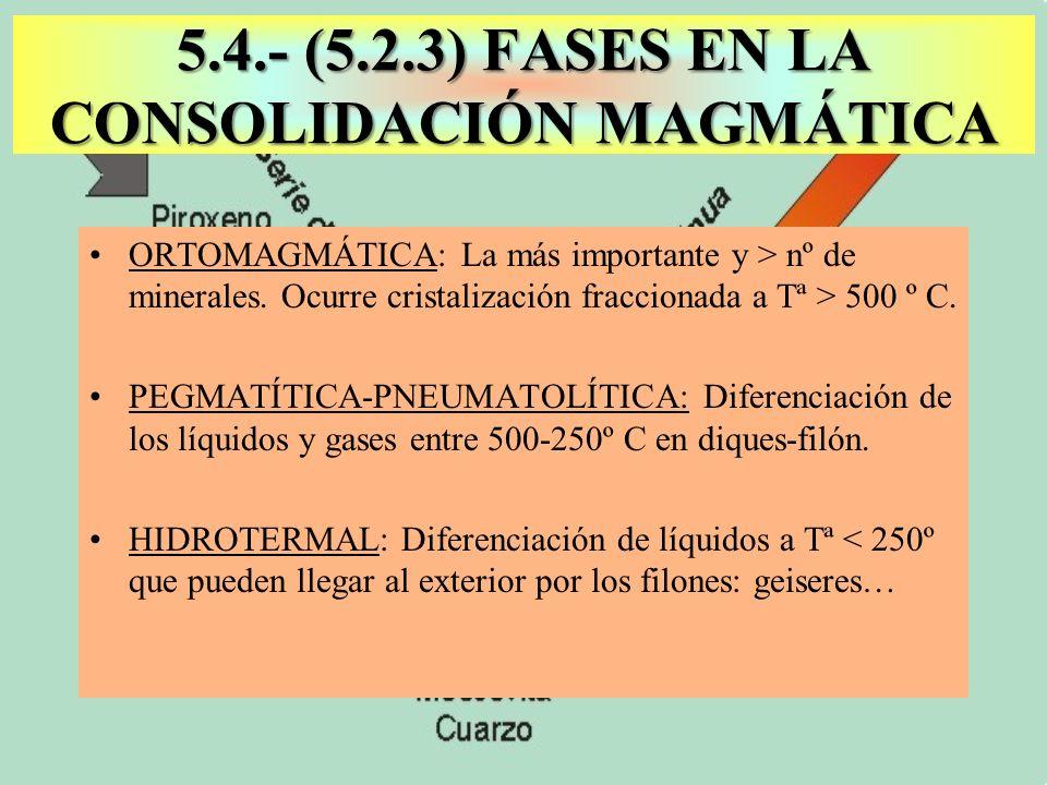 ORTOMAGMÁTICA: La más importante y > nº de minerales. Ocurre cristalización fraccionada a Tª > 500 º C. PEGMATÍTICA-PNEUMATOLÍTICA: Diferenciación de