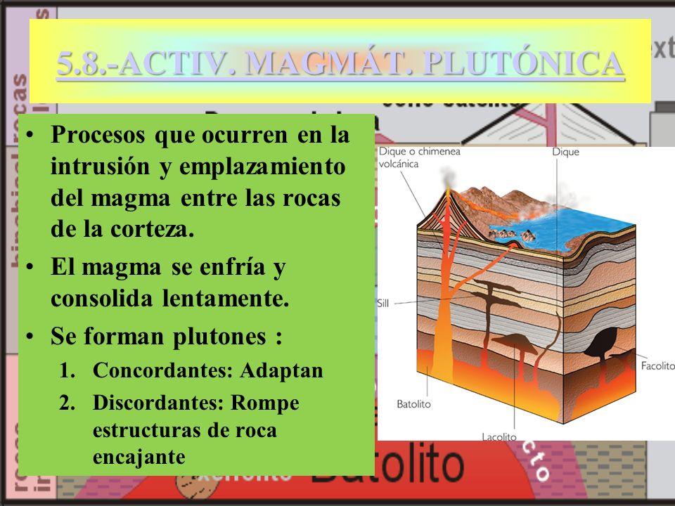 5.8.-ACTIV. MAGMÁT. PLUTÓNICA 5.8.-ACTIV. MAGMÁT. PLUTÓNICA Procesos que ocurren en la intrusión y emplazamiento del magma entre las rocas de la corte