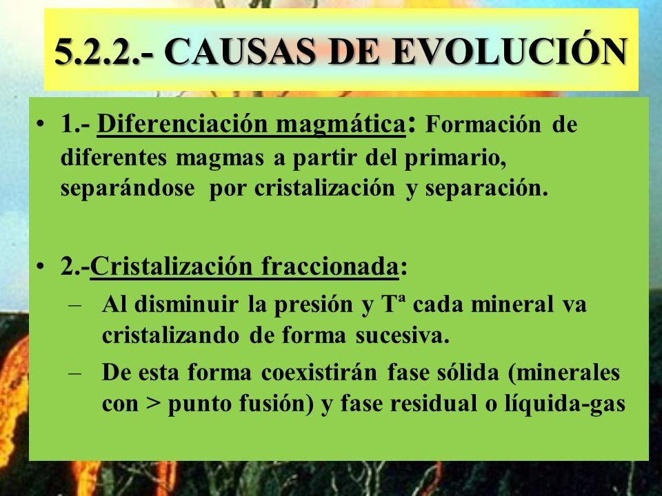 5.2.2.- CAUSAS DE EVOLUCIÓN 1.- Diferenciación magmática : Formación de diferentes magmas a partir del primario, separándose por cristalización y sepa