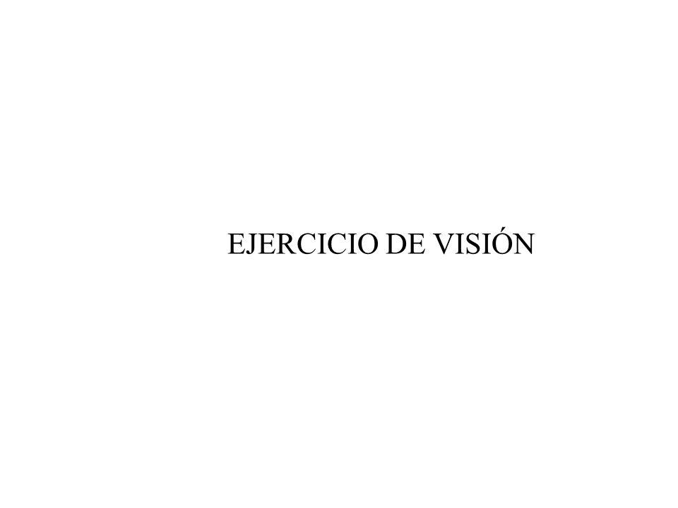 EJERCICIO DE VISIÓN