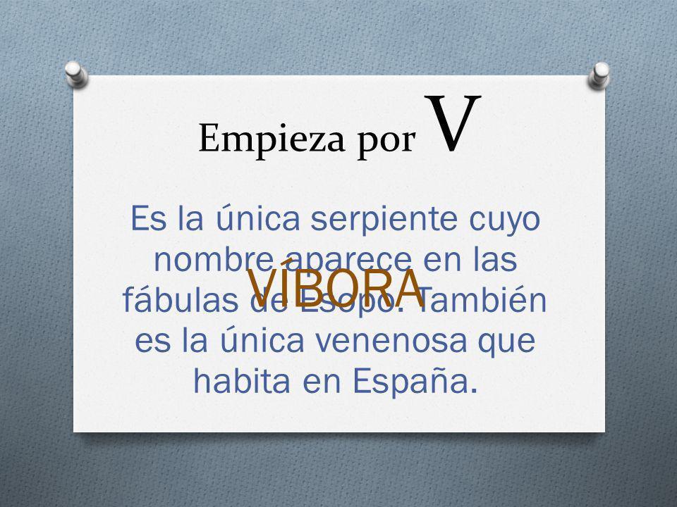 Empieza por V Es la única serpiente cuyo nombre aparece en las fábulas de Esopo. También es la única venenosa que habita en España. VÍBORA