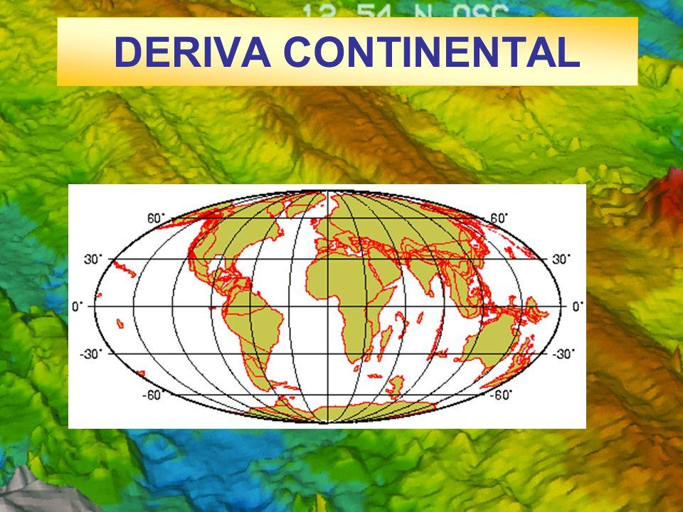 CONCEPTO Y LIMITES DE LAS PLACAS LITOSFÉRICAS Dorsales oceánicas: Zonas generadoras de litosfera.