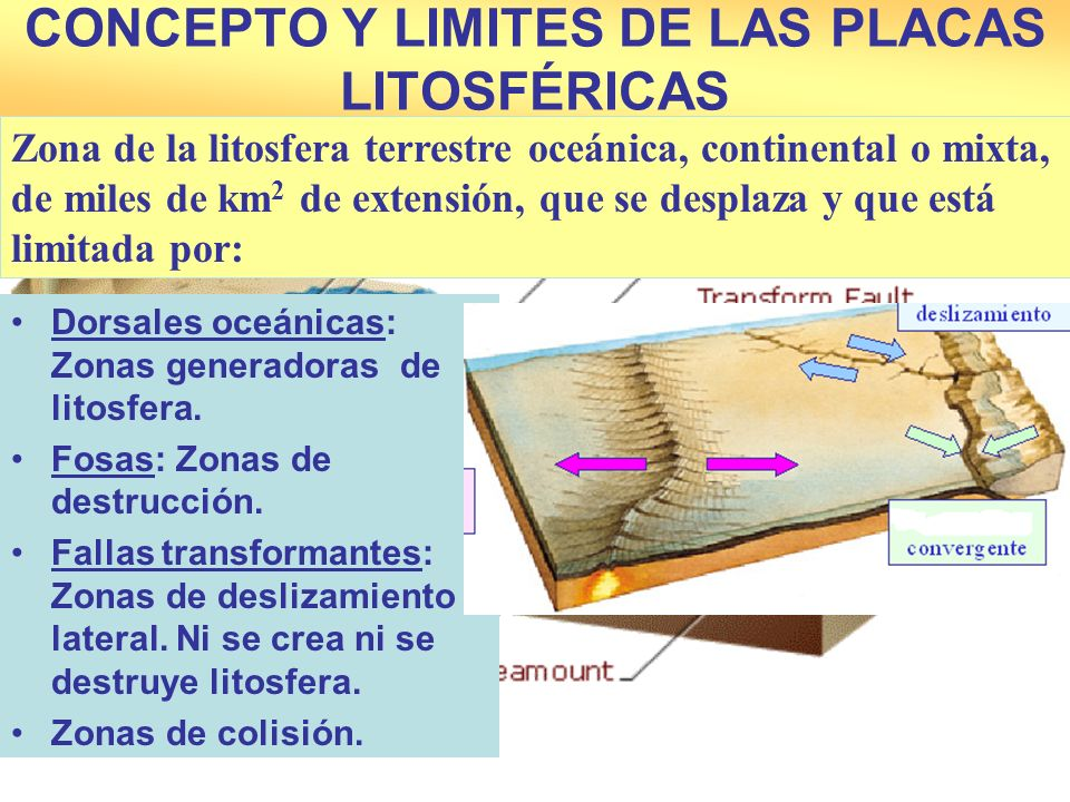 CONCEPTO Y LIMITES DE LAS PLACAS LITOSFÉRICAS Dorsales oceánicas: Zonas generadoras de litosfera. Fosas: Zonas de destrucción. Fallas transformantes: