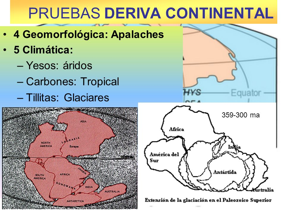 4 Geomorfológica: Apalaches 5 Climática: –Yesos: áridos –Carbones: Tropical –Tillitas: Glaciares PRUEBAS DERIVA CONTINENTAL 359-300 ma