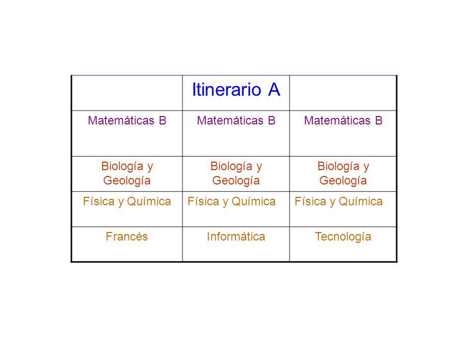 Itinerario A Matemáticas B Biología y Geología Física y Química FrancésInformáticaTecnología