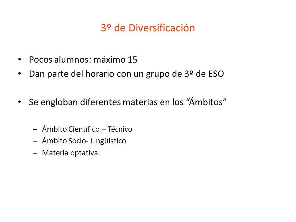 3º de Diversificación Pocos alumnos: máximo 15 Dan parte del horario con un grupo de 3º de ESO Se engloban diferentes materias en los Ámbitos – Ámbito