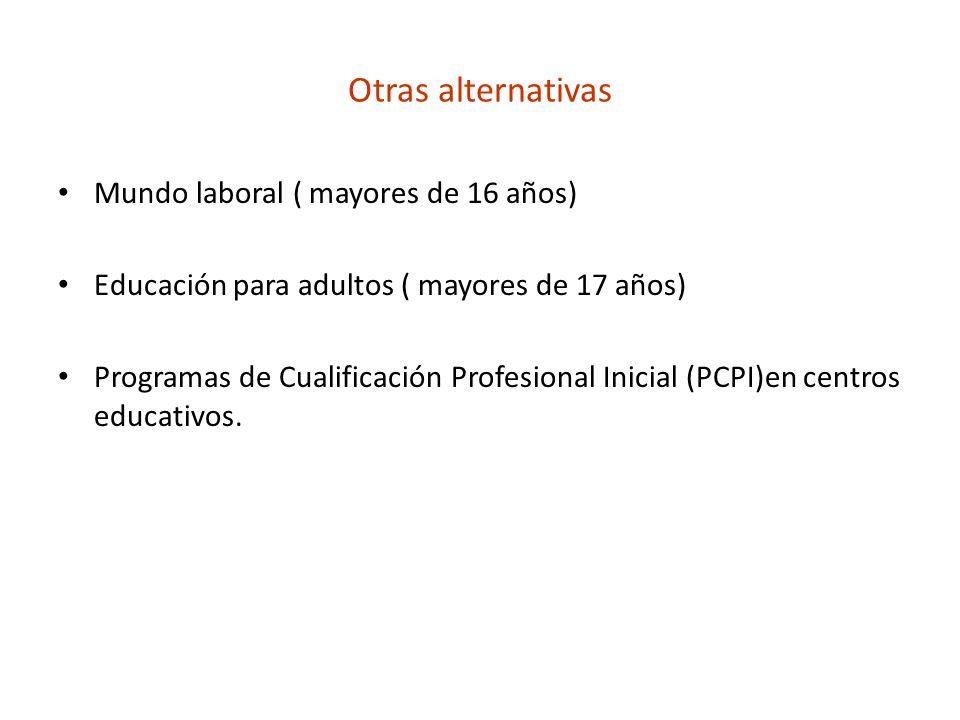 Otras alternativas Mundo laboral ( mayores de 16 años) Educación para adultos ( mayores de 17 años) Programas de Cualificación Profesional Inicial (PC
