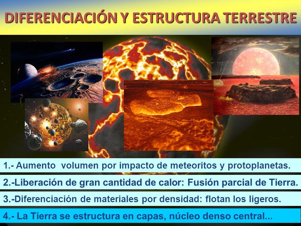 DIFERENCIACIÓN Y ESTRUCTURA TERRESTRE 2.-Liberación de gran cantidad de calor: Fusión parcial de Tierra. 3.- Diferenciación de materiales por densidad