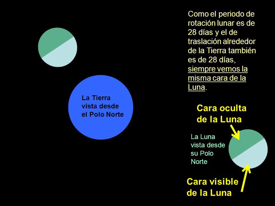 Como el periodo de rotación lunar es de 28 días y el de traslación alrededor de la Tierra también es de 28 días, siempre vemos la misma cara de la Lun
