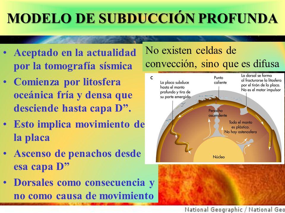 MODELO DE SUBDUCCIÓN PROFUNDA Aceptado en la actualidad por la tomografía sísmica Comienza por litosfera oceánica fría y densa que desciende hasta capa D.