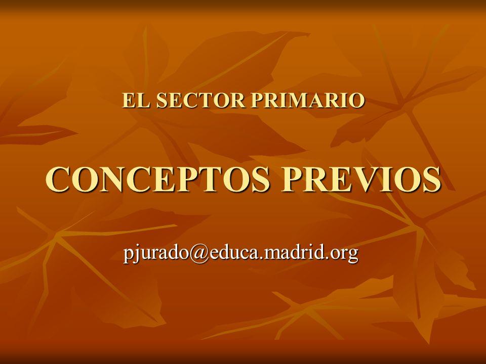 EL SECTOR PRIMARIO CONCEPTOS PREVIOS pjurado@educa.madrid.org