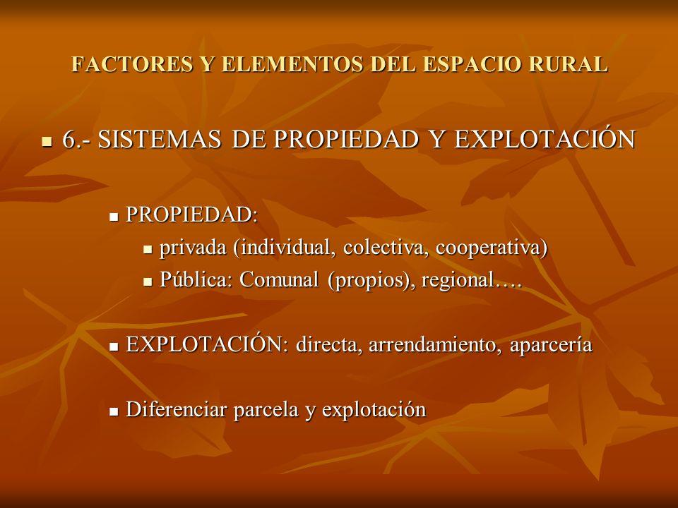 6.- SISTEMAS DE PROPIEDAD Y EXPLOTACIÓN 6.- SISTEMAS DE PROPIEDAD Y EXPLOTACIÓN PROPIEDAD: PROPIEDAD: privada (individual, colectiva, cooperativa) pri