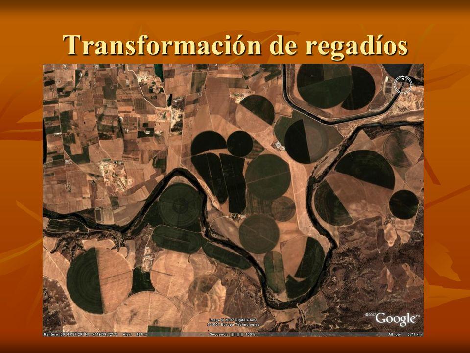 Transformación de regadíos