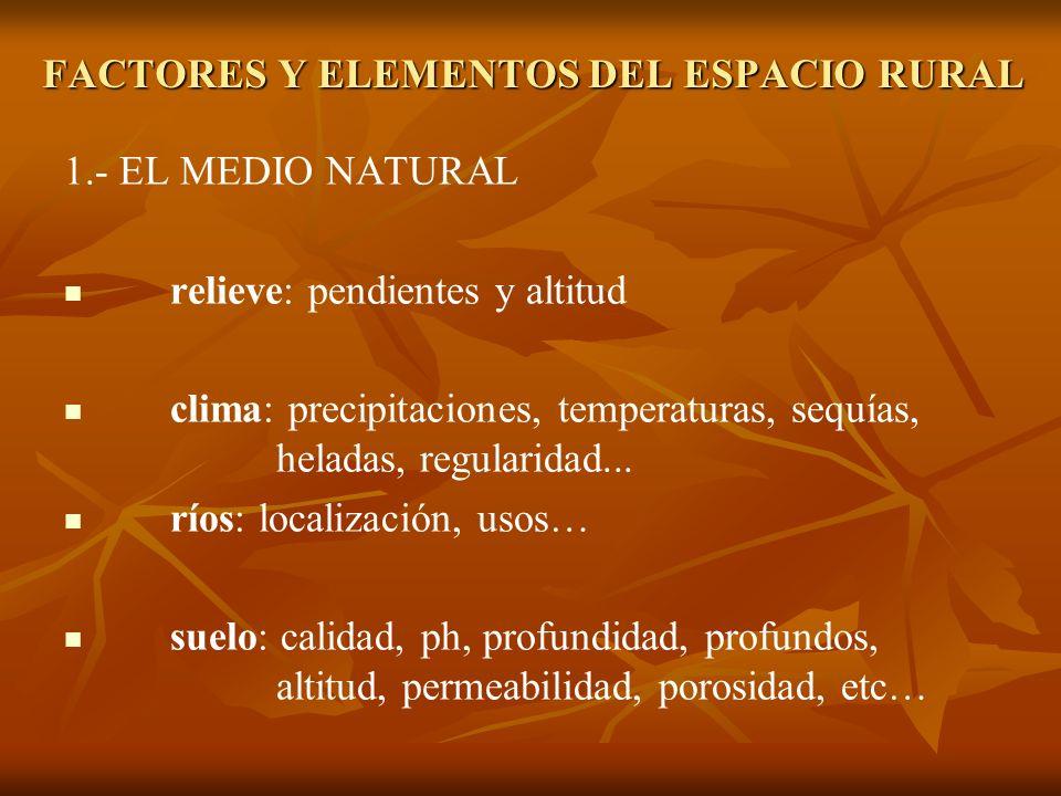 1.- EL MEDIO NATURAL relieve: pendientes y altitud clima: precipitaciones, temperaturas, sequías, heladas, regularidad... ríos: localización, usos… su