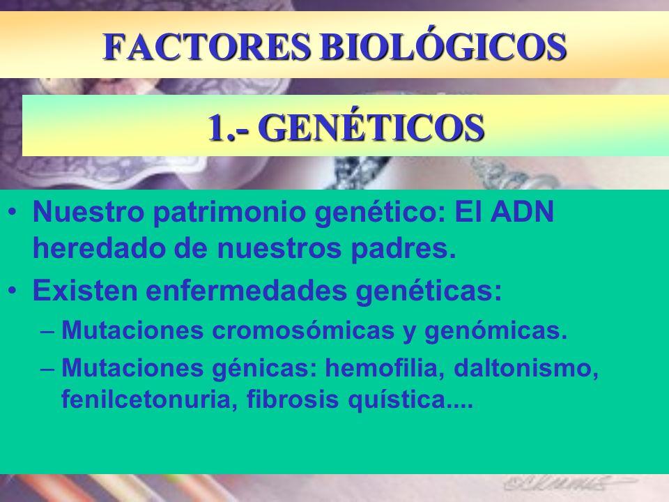 Nuestro patrimonio genético: El ADN heredado de nuestros padres. Existen enfermedades genéticas: –Mutaciones cromosómicas y genómicas. –Mutaciones gén