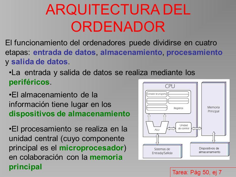 ARQUITECTURA DEL ORDENADOR El funcionamiento del ordenadores puede dividirse en cuatro etapas: entrada de datos, almacenamiento, procesamiento y salida de datos.