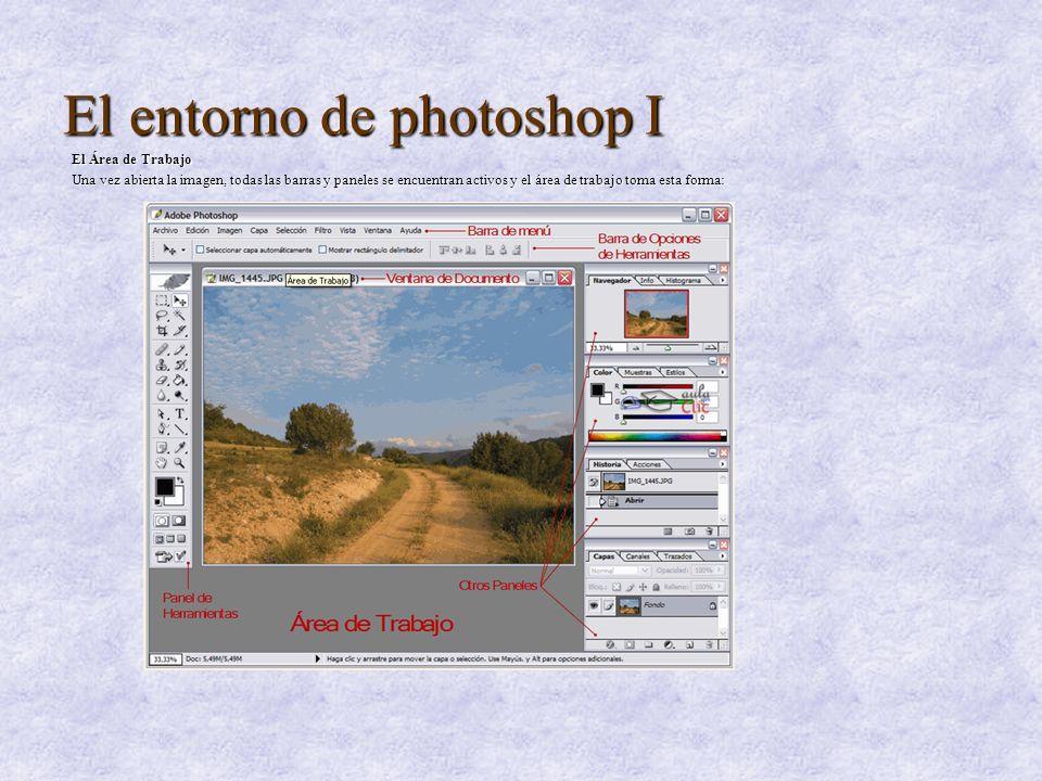 El entorno de photoshop I El Área de Trabajo Una vez abierta la imagen, todas las barras y paneles se encuentran activos y el área de trabajo toma est