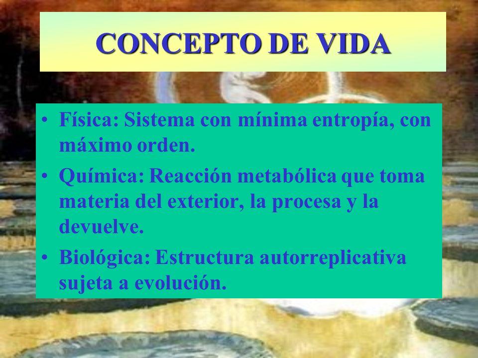 Física: Sistema con mínima entropía, con máximo orden. Química: Reacción metabólica que toma materia del exterior, la procesa y la devuelve. Biológica