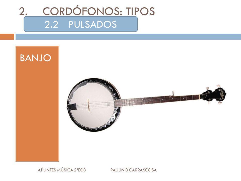 BANJO APUNTES MÚSICA 2ºESO PAULINO CARRASCOSA 2.CORDÓFONOS: TIPOS 2.2PULSADOS