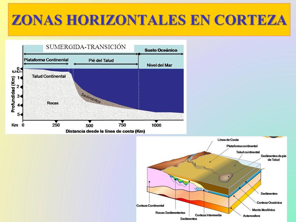 CARACTERISTICAS DE LAS CAPAS Superficial, sólida, rigida y separada por Mohorovicic Mayor grosor Cratones viejos y orógenos Pasiva y vieja CORTEZA CONTINENTAL