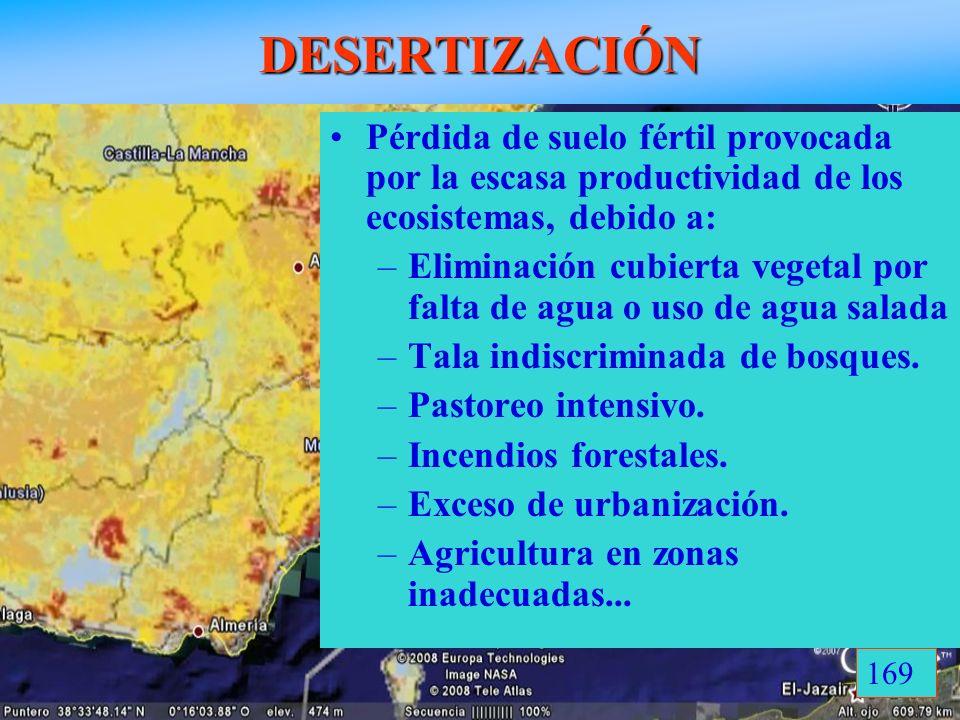 DESERTIZACIÓN Desertización progresiva en España Pérdida de suelo fértil provocada por la escasa productividad de los ecosistemas, debido a: –Eliminac