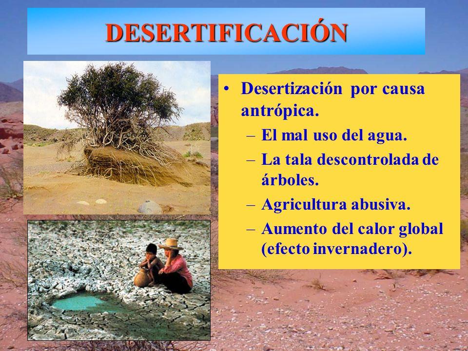 Desertización por causa antrópica. –El mal uso del agua. –La tala descontrolada de árboles. –Agricultura abusiva. –Aumento del calor global (efecto in