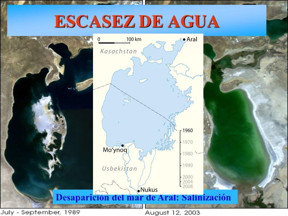 ESCASEZ DE AGUA Desaparición del mar de Aral: Salinización