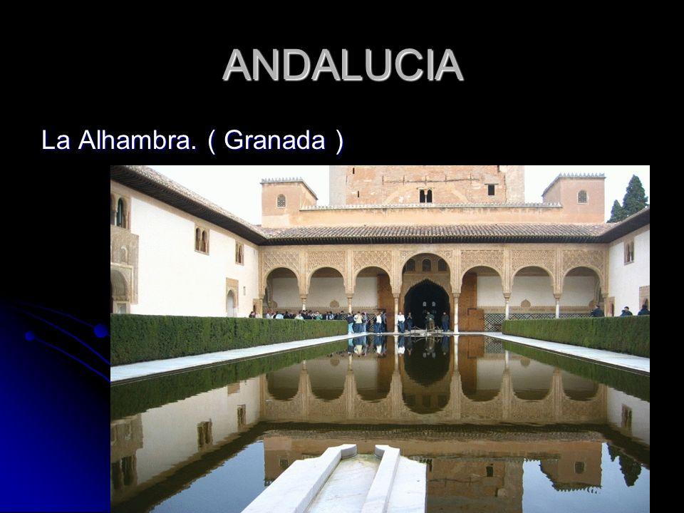 ANDALUCIA La Alhambra. ( Granada )
