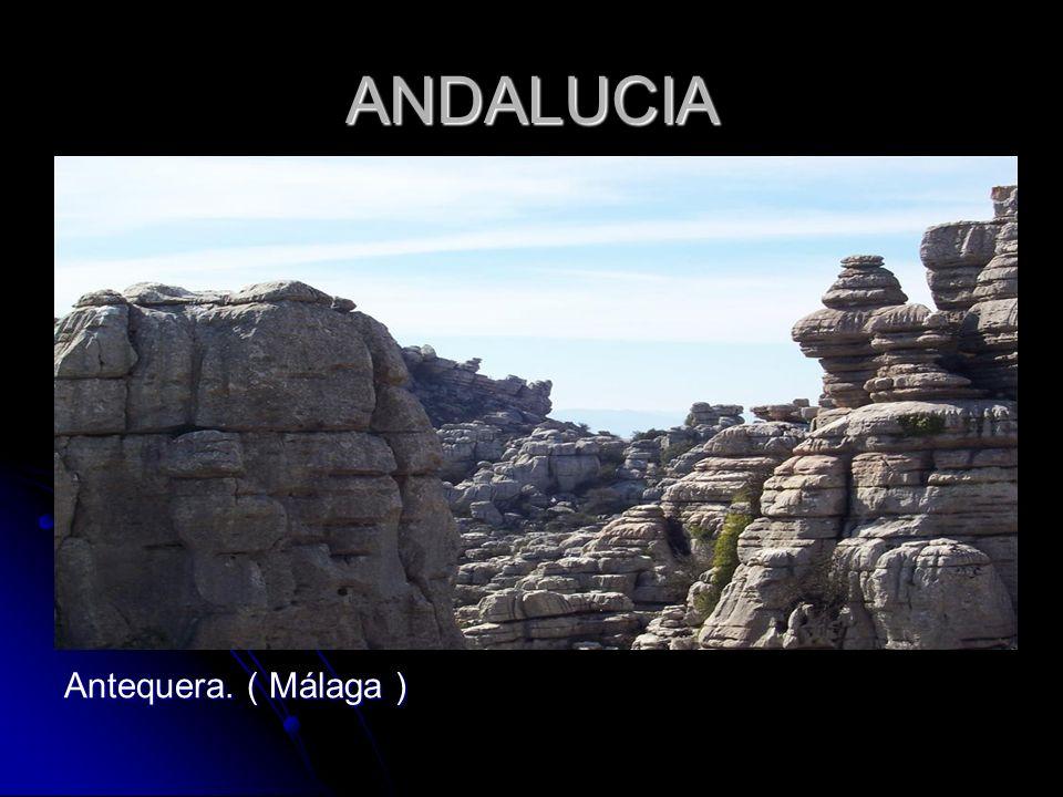 ANDALUCIA Antequera. ( Málaga )