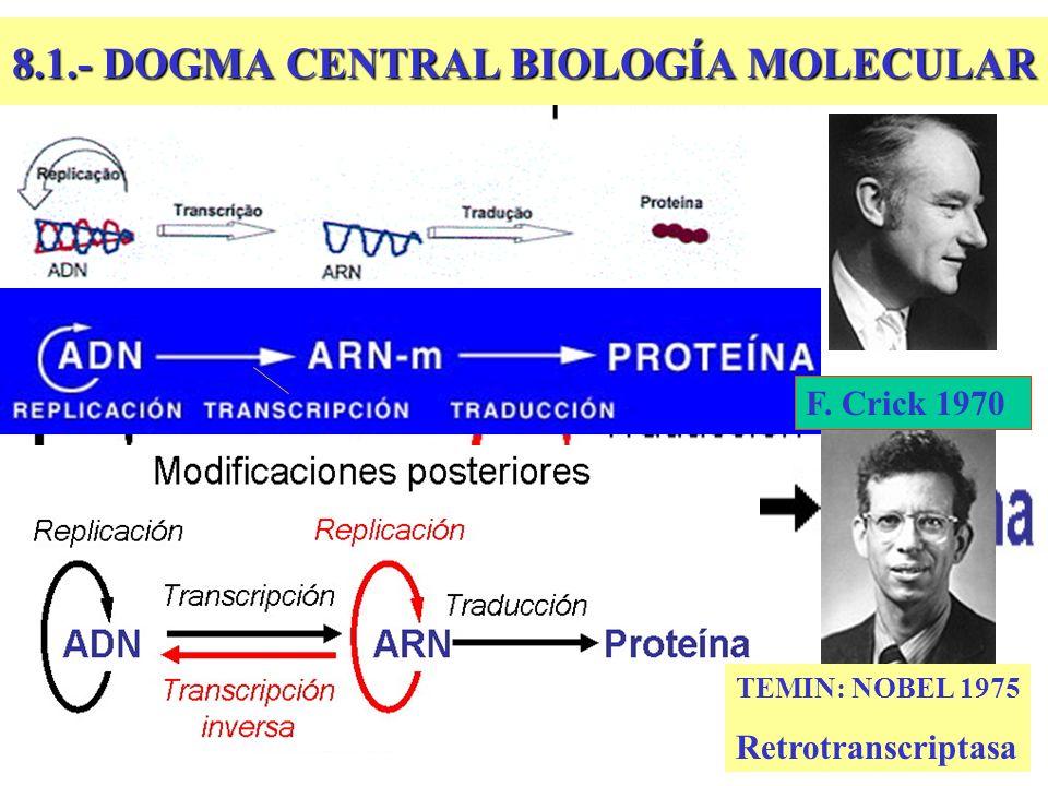 8.1.- DOGMA CENTRAL BIOLOGÍA MOLECULAR TEMIN: NOBEL 1975 Retrotranscriptasa F. Crick 1970