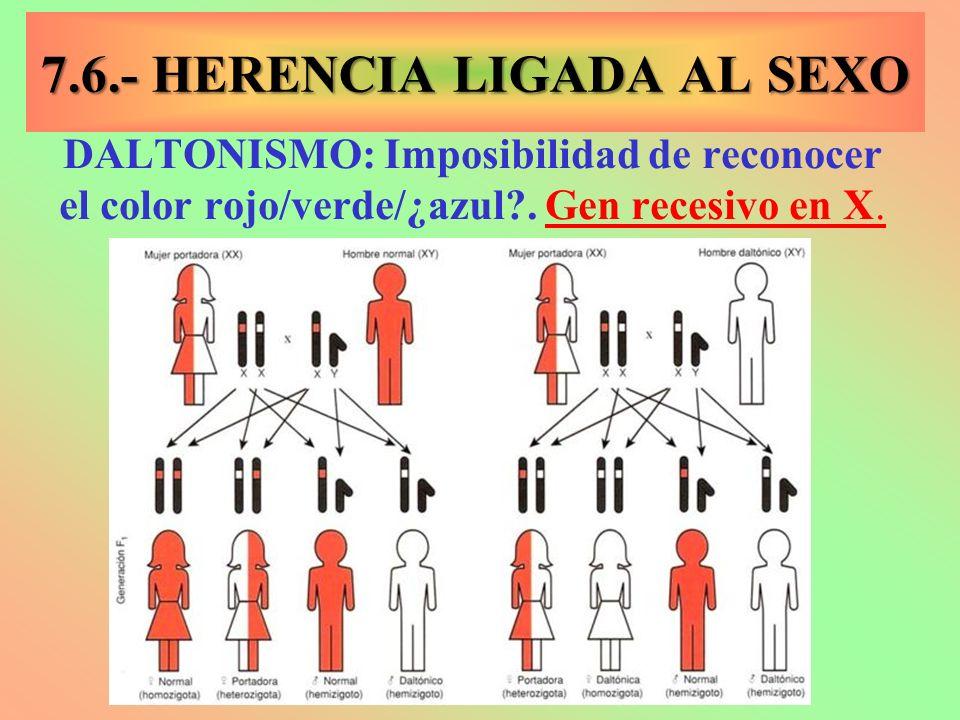 DALTONISMO: Imposibilidad de reconocer el color rojo/verde/¿azul?. Gen recesivo en X. 7.6.- HERENCIA LIGADA AL SEXO