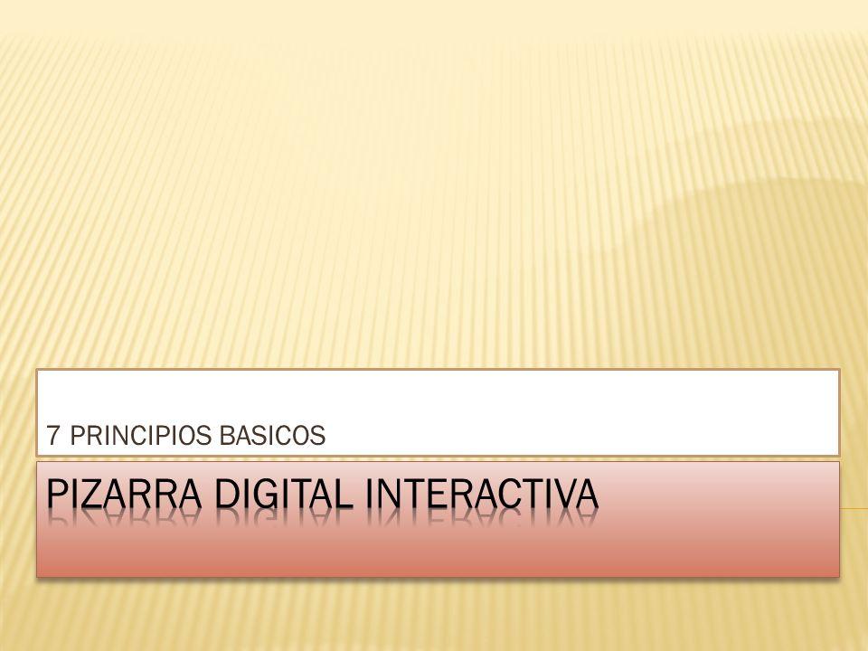 7 PRINCIPIOS BASICOS