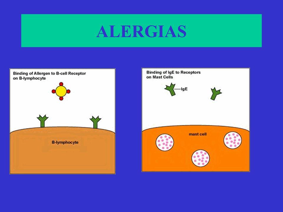 ALÉRGENOS COMUNES Anafilaxia(fármacos,venenos,suero, cacahuate) Urticaria aguda (picaduras insectos, pruebas alérgicas) Rinitis alérgica( pólenes, áca