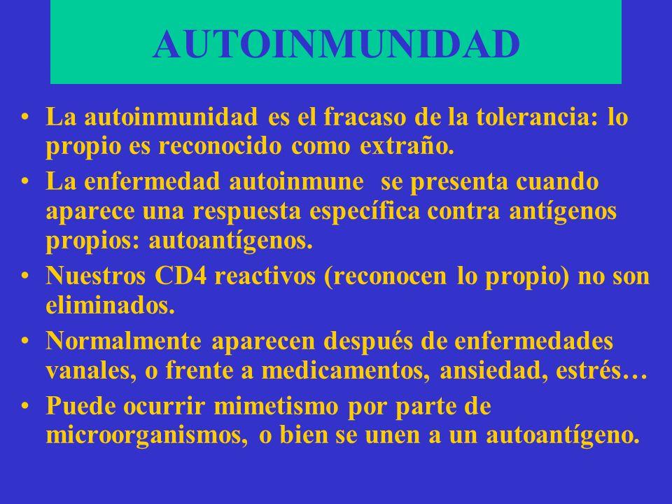 ANOMALÍAS DEL S. INMUNE AUTOINMUNIDAD ALERGIA INMUNODEFICIENCIAS HISTOCOMPATIBILIDAD