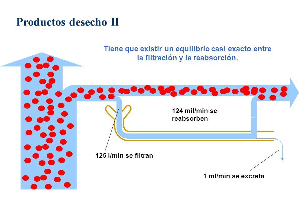 125 l/min se filtran 124 mil/min se reabsorben 1 ml/min se excreta Tiene que existir un equilibrio casi exacto entre la filtración y la reabsorción. P