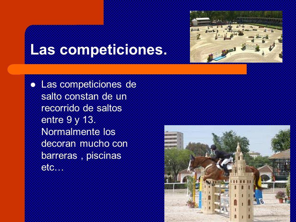 Las competiciones. Las competiciones de salto constan de un recorrido de saltos entre 9 y 13. Normalmente los decoran mucho con barreras, piscinas etc