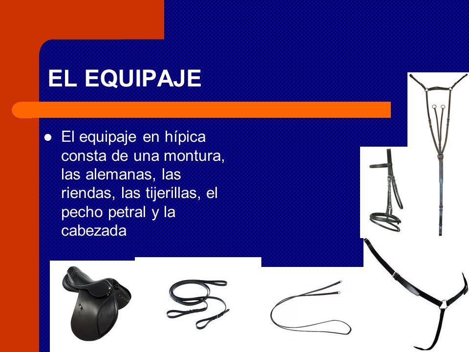 EL EQUIPAJE El equipaje en hípica consta de una montura, las alemanas, las riendas, las tijerillas, el pecho petral y la cabezada
