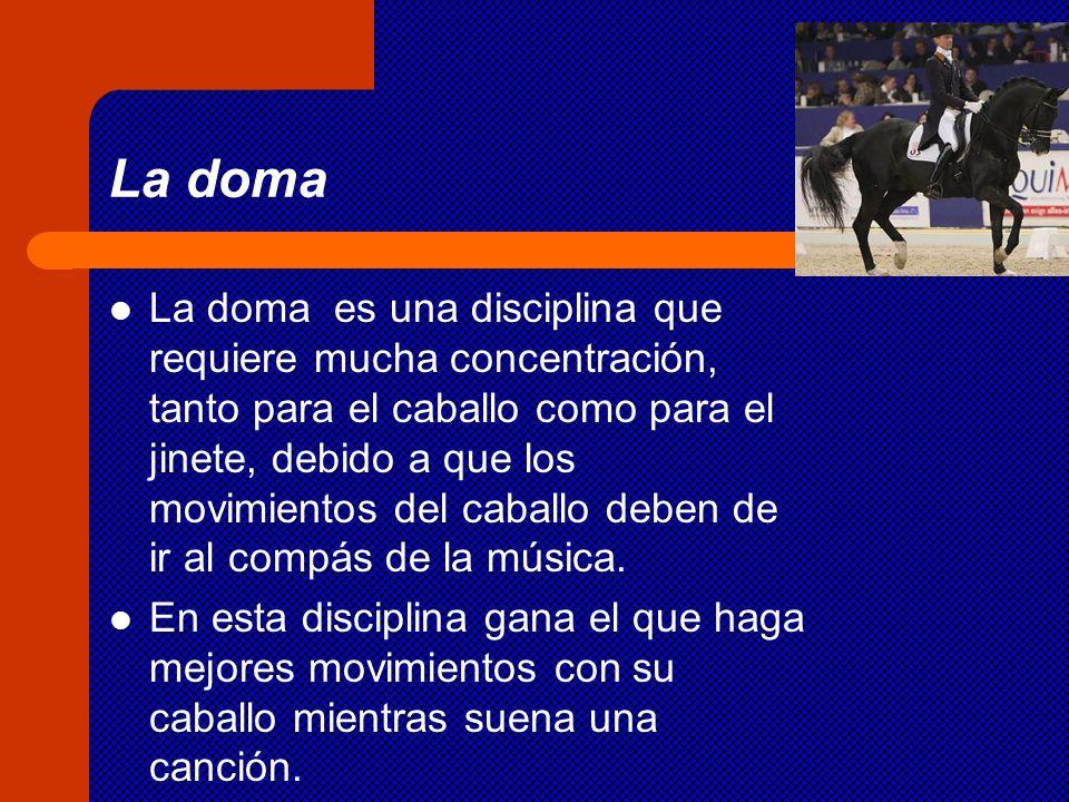La doma La doma es una disciplina que requiere mucha concentración, tanto para el caballo como para el jinete, debido a que los movimientos del caball