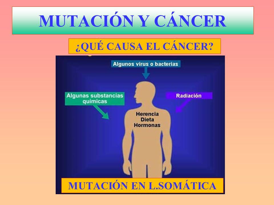 MUTACIÓN Y CÁNCER Factores o Agentes mutágenos que producen CÁNCER: Biológicos: Virus y alguna bacteria ¿.