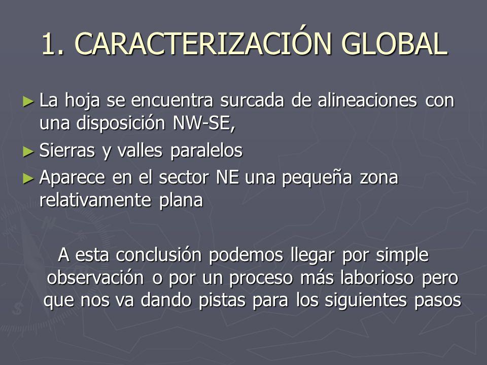 1. CARACTERIZACIÓN GLOBAL La hoja se encuentra surcada de alineaciones con una disposición NW-SE, La hoja se encuentra surcada de alineaciones con una
