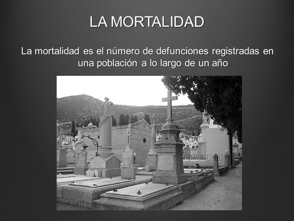 LA MORTALIDAD La mortalidad es el número de defunciones registradas en una población a lo largo de un año