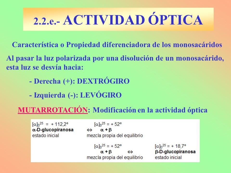 2.2.e.- ACTIVIDAD ÓPTICA Característica o Propiedad diferenciadora de los monosacáridos Al pasar la luz polarizada por una disolución de un monosacári