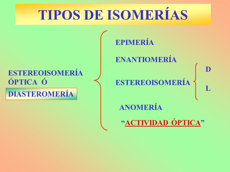 TIPOS DE ISOMERÍAS DIASTEROMERÍA ANOMERÍA ENANTIOMERÍA EPIMERÍA ESTEREOISOMERÍA ESTEREOISOMERÍA ÓPTICA Ó D L ACTIVIDAD ÓPTICA