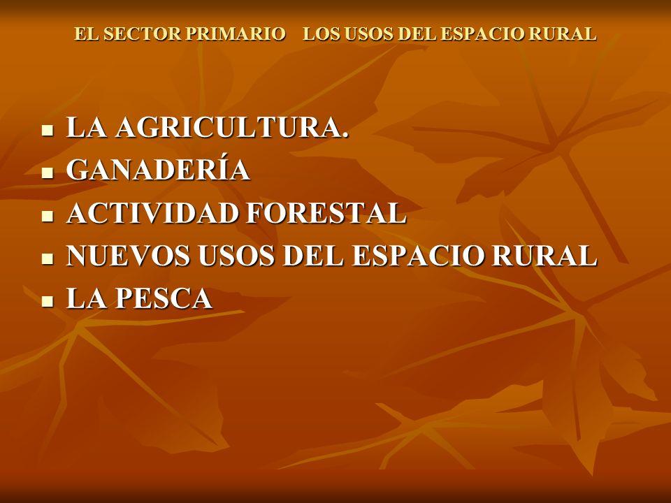 EL SECTOR PRIMARIO LOS USOS DEL ESPACIO RURAL LA AGRICULTURA.