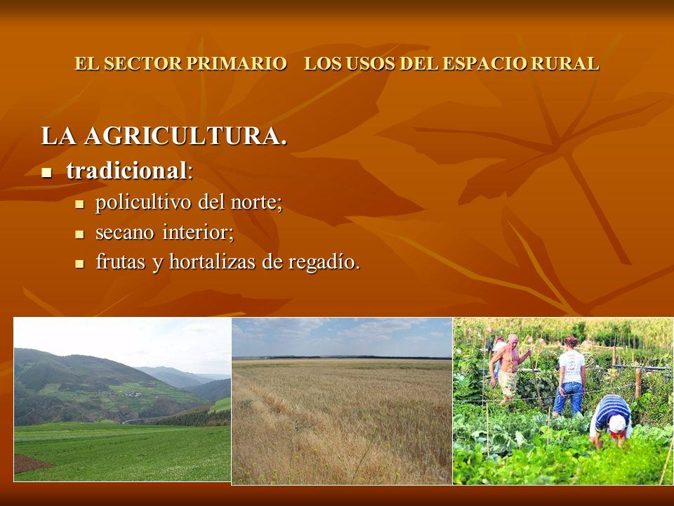 GANADERÍA:Producción: Bovino: para leche en el norte y alrededores de mercados, para carne en zonas de montaña, Europa es muy excedentaria.