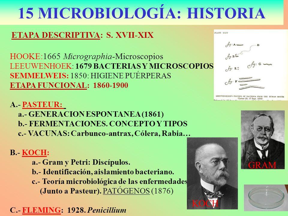 15 MICROBIOLOGÍA: HISTORIA ETAPA DESCRIPTIVA: S. XVII-XIX HOOKE:1665 Micrographia-Microscopios LEEUWENHOEK: 1679 BACTERIAS Y MICROSCOPIOS SEMMELWEIS: