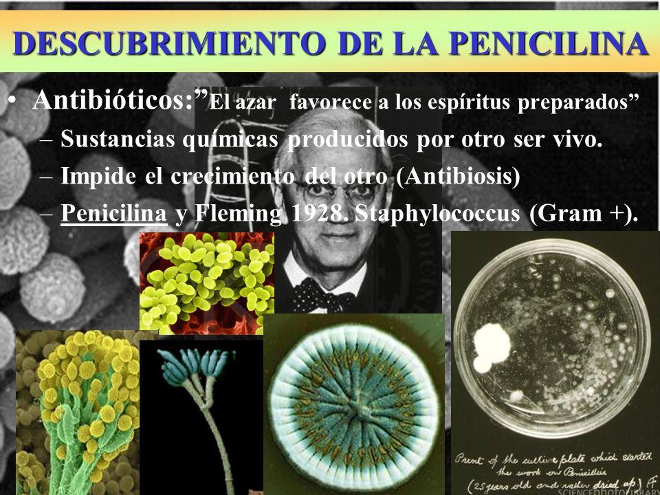 CONCEPTO VIRUS 1.- Organizaciones biológicas acelulares que sólo se relacionan 2.- Microorganismos parásitos obligados formados por la asociación de moléculas: Ácido nucleico y proteínas.