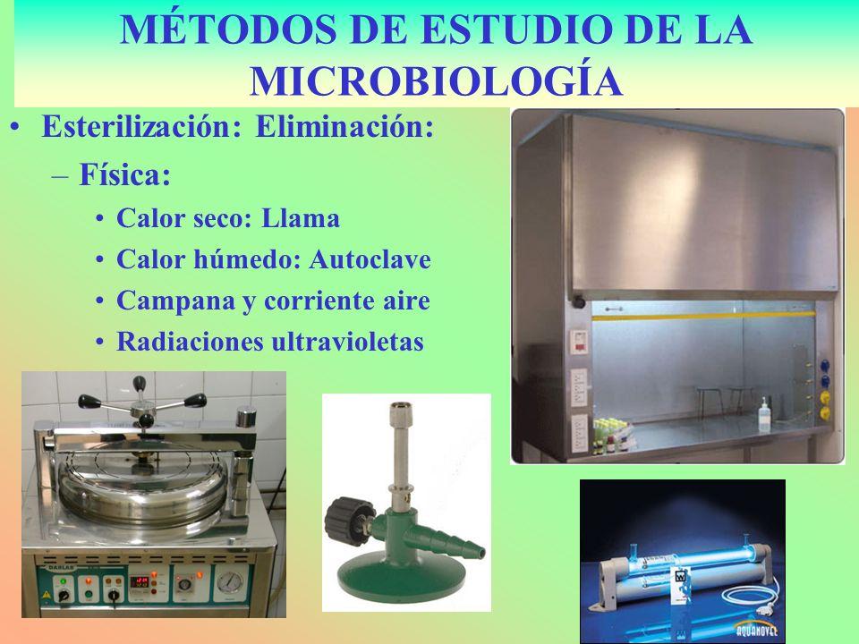 Esterilización: Eliminación: –Física: Calor seco: Llama Calor húmedo: Autoclave Campana y corriente aire Radiaciones ultravioletas MÉTODOS DE ESTUDIO