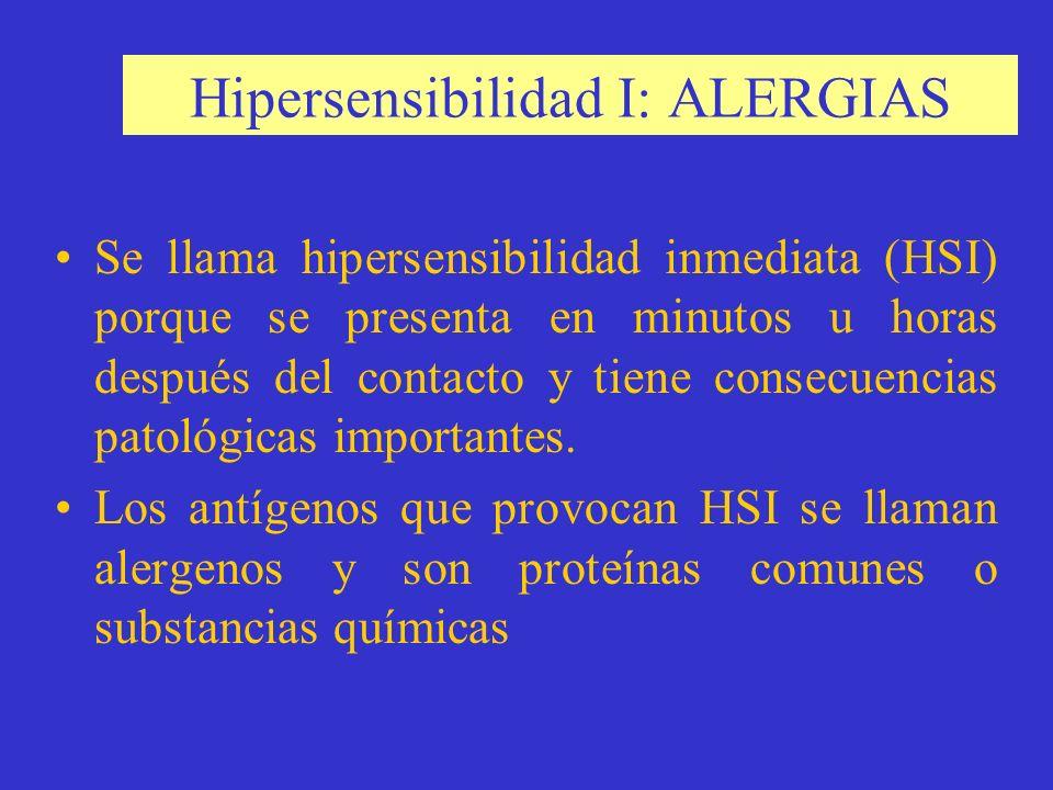 Hipersensibilidad I: ALERGIAS Se llama hipersensibilidad inmediata (HSI) porque se presenta en minutos u horas después del contacto y tiene consecuencias patológicas importantes.