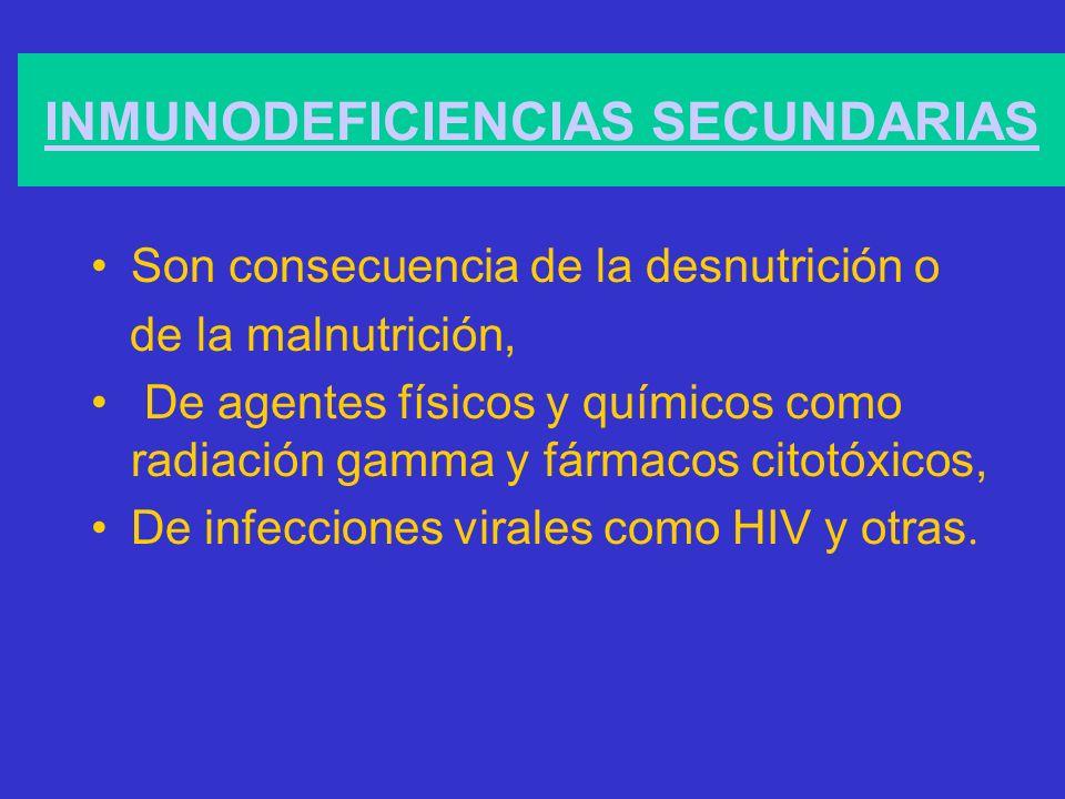 INMUNODEFICIENCIAS SECUNDARIAS Son consecuencia de la desnutrición o de la malnutrición, De agentes físicos y químicos como radiación gamma y fármacos citotóxicos, De infecciones virales como HIV y otras.